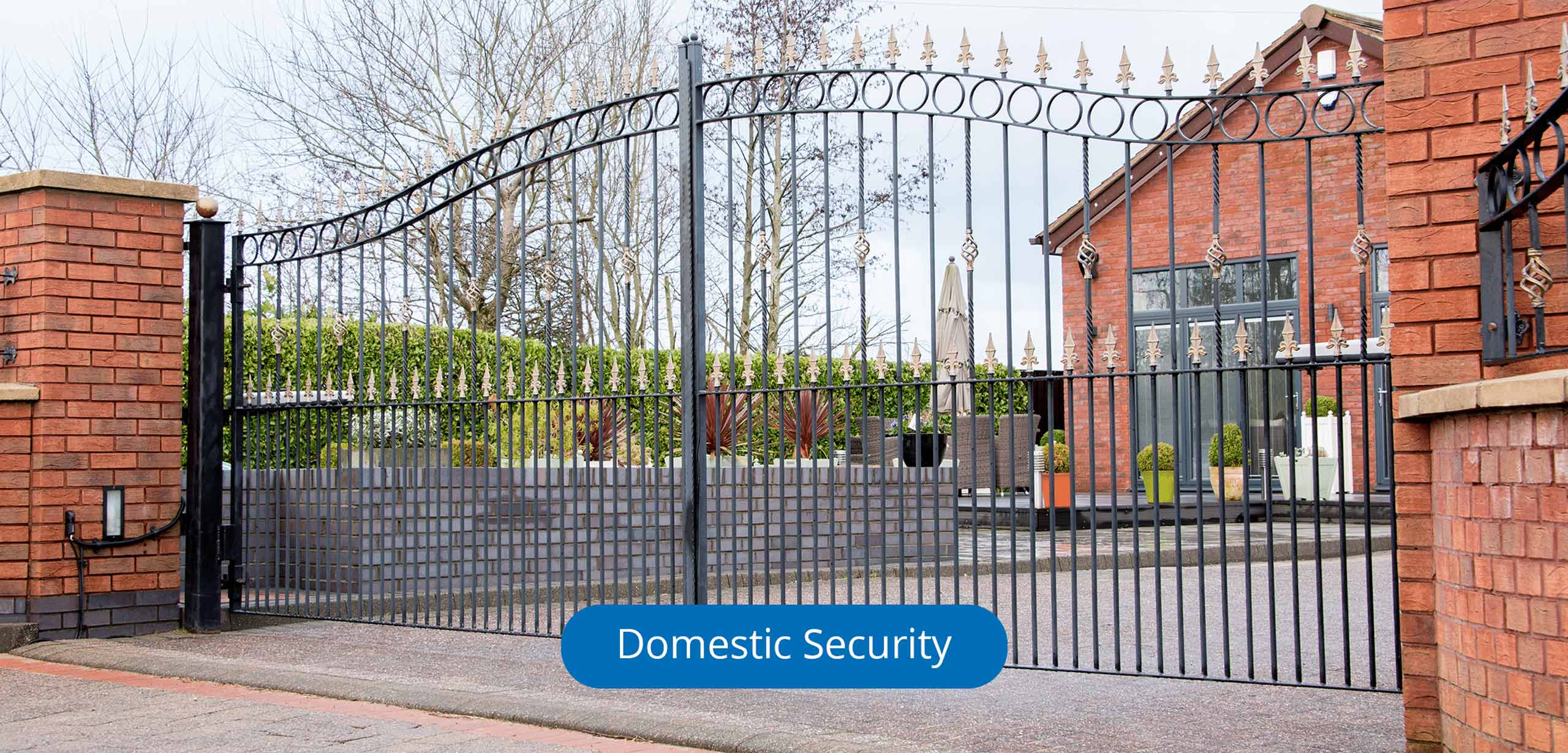 Associated Security Solutions-Domestic Security